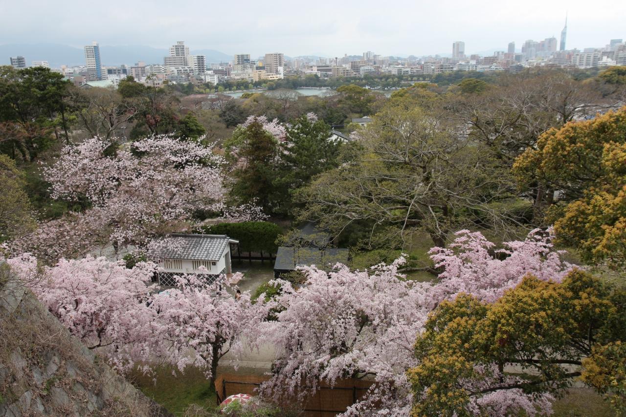 福岡城の天守台からの風景1