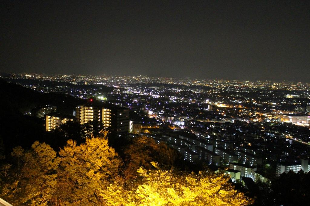 みのお山荘からの夜景